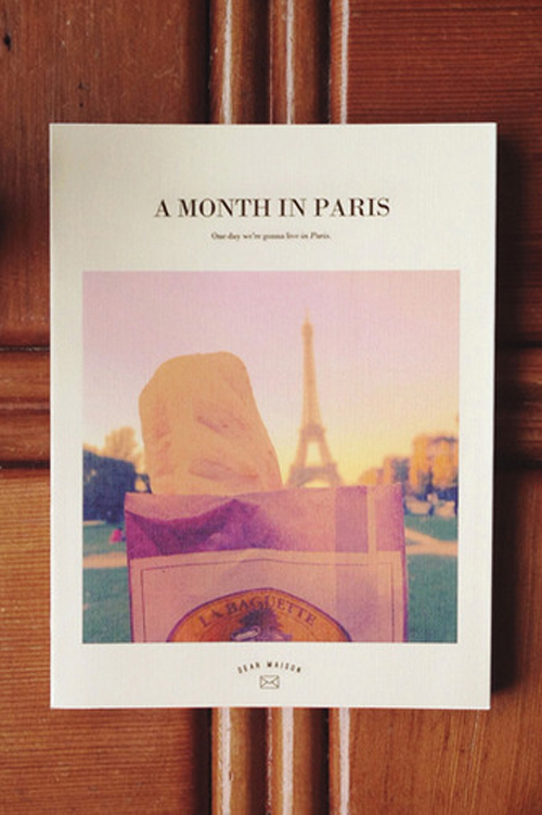 A Month In Paris Diary Ver. 2